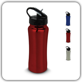 StayActive Water Purifier Bottle