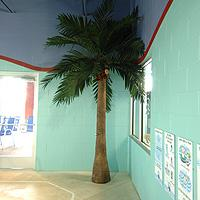 Swimtastic Palm Tree Shower