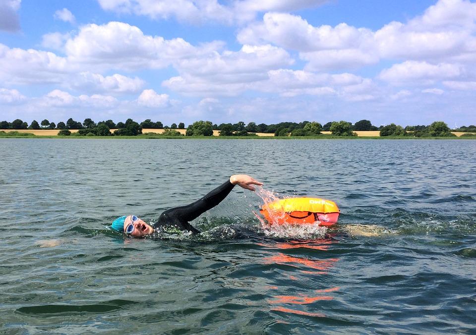 Authoritative Adult swim episode guide not simple